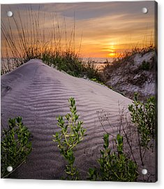 Morning Glow Acrylic Print by Steve DuPree