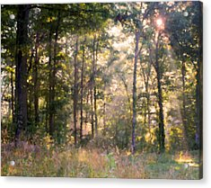 Morning Has Broken Acrylic Print by Kristin Elmquist