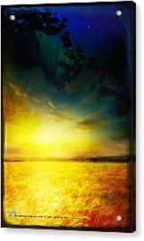 Morning's Promise Acrylic Print by Shevon Johnson