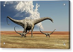 Mother Diplodocus Dinosaur Walks Acrylic Print by Corey Ford