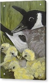 Mother Goose Acrylic Print by Edith Hunsberger