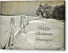 Mother Nature's Christmas Tree Card Acrylic Print by Lois Bryan