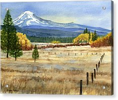 Mount Adams  Acrylic Print by Sharon Freeman