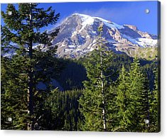 Mount Raineer 1 Acrylic Print by Marty Koch