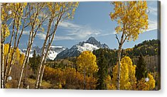 Mount Sneffels Autumn Panorama Acrylic Print by Dusty Demerson