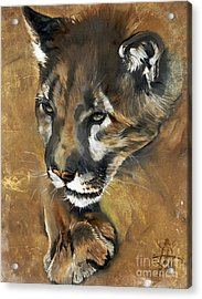 Mountain Lion - Guardian Of The North Acrylic Print by J W Baker
