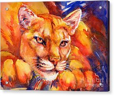 Mountain Lion Red-yellow-blue Acrylic Print by Summer Celeste