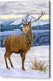 Mountain Majesty Acrylic Print by Sarah Batalka