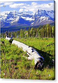 Mountain Splendor Acrylic Print by Marty Koch