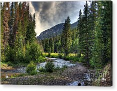 Mountain Stream 4 Acrylic Print by Pete Hellmann