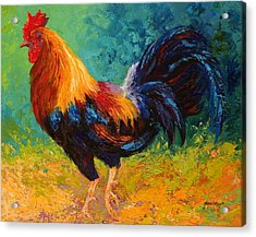 Mr Big - Rooster Acrylic Print by Marion Rose