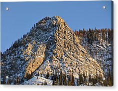 Mt. Royal Acrylic Print by Tobin Truslow