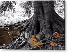 Music Roots Acrylic Print by Debbie Hall