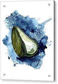 Mussel Shell Acrylic Print by Paul Gaj