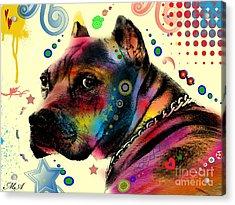 My Dog Acrylic Print by Mark Ashkenazi