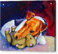 My Teddy - Wire Hair Fox Terrier Acrylic Print by Lyn Cook
