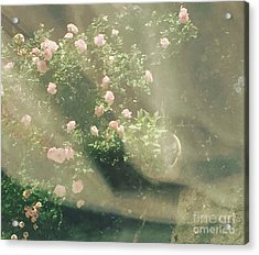 Mystic  Roses Acrylic Print by Trilby Cole