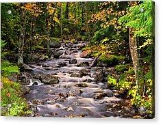 Mystical Mountain Stream Acrylic Print by Brad Hoyt