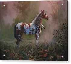 Native American War Pony Acrylic Print by Tom Shropshire
