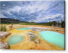 Natural Beauty Acrylic Print by Philippe Sainte-Laudy Photography