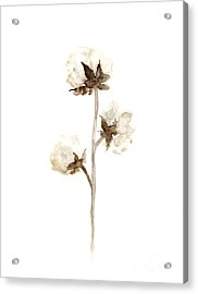 Natural Cotton Wall Hanging Acrylic Print by Joanna Szmerdt