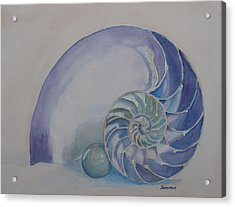 Nautilus With Marble Acrylic Print by Jenny Armitage