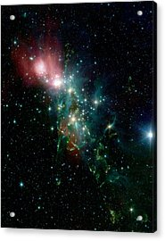 Nebula Ngc 1333 In The Constellation Perseus Acrylic Print by American School
