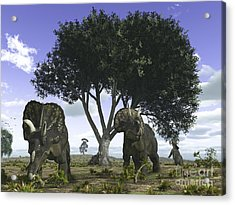 Nedoceratops Graze Beneath A Giant Oak Acrylic Print by Walter Myers
