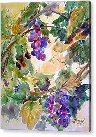 Neighborhood Grapevine Acrylic Print by Kathy Braud