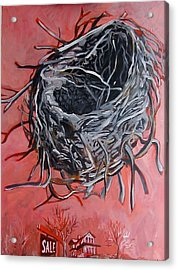 Nest Above House Acrylic Print by Tilly Strauss