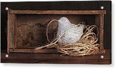 Nesting Bird Still Life II Acrylic Print by Tom Mc Nemar