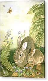Nesting Bunnies Acrylic Print by Patricia Pushaw