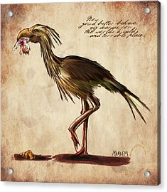 Never Bird Acrylic Print by Mandem