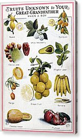 New Fruits, C1950s Acrylic Print by Granger