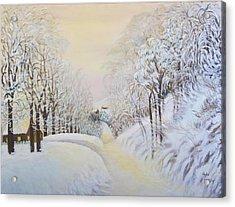 New Snow In Hunting Hills Acrylic Print by Douglas Ann Slusher