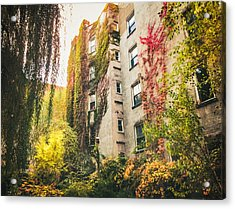 New York City Autumn East Village Acrylic Print by Vivienne Gucwa