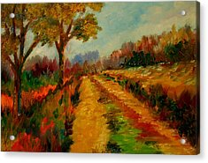 Nice Pathway Acrylic Print by Constantinos Charalampopoulos