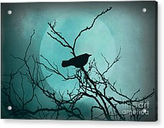 Night Bird Acrylic Print by Patricia Strand