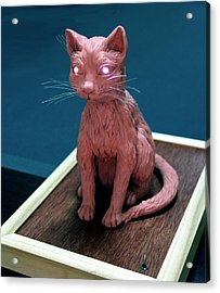 Night Cat Acrylic Print by Yelena Rubin