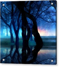 Night Fog In A City Park Acrylic Print by Francesa Miller