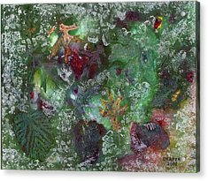 Night Freeze Acrylic Print by James Douglas Draper