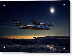 Night Stalkers Acrylic Print by Peter Chilelli