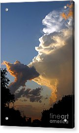 Nightly Storm Acrylic Print by Steve Augustin