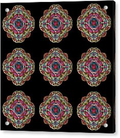 Nine Medallions Acrylic Print by Thomas Smith