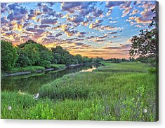Noisette Rising Acrylic Print by Donnie Smith