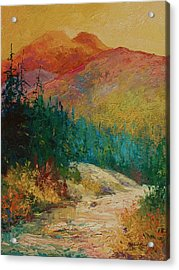 Northern Essence  Acrylic Print by Marion Rose
