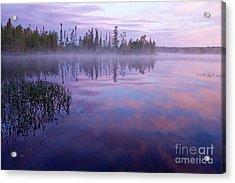 Northern Morning Beauty Acrylic Print by Sandra Updyke