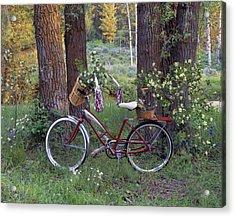 Nostalgia Acrylic Print by Leland D Howard