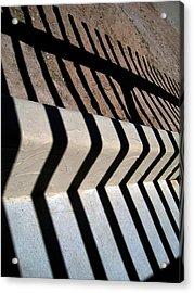 Not A Zebra Acrylic Print by Susanne Van Hulst