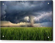 Notill Acrylic Print by Thomas Zimmerman